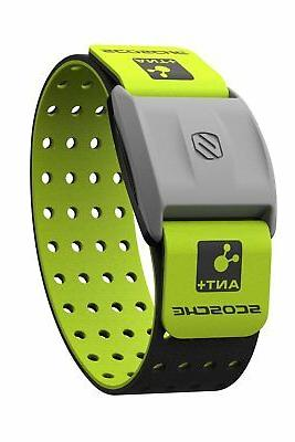 rhythm heart rate monitor armband